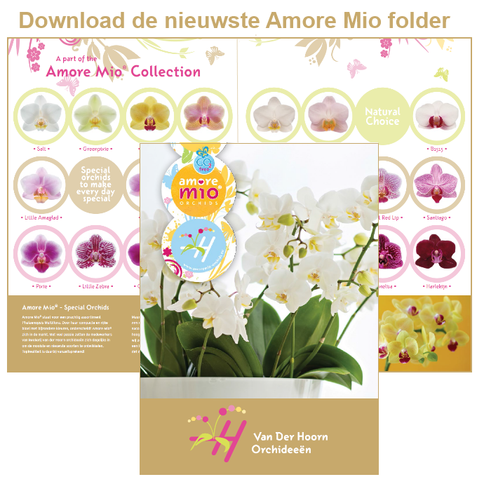 Download knop nieuwste folder